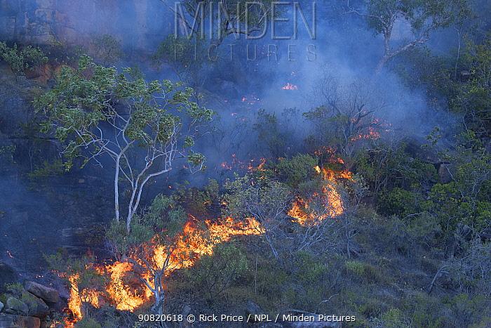 Controlled burning of vegetation. King George River, Koolama Bay, The Kimberley, Western Australia. 2016.