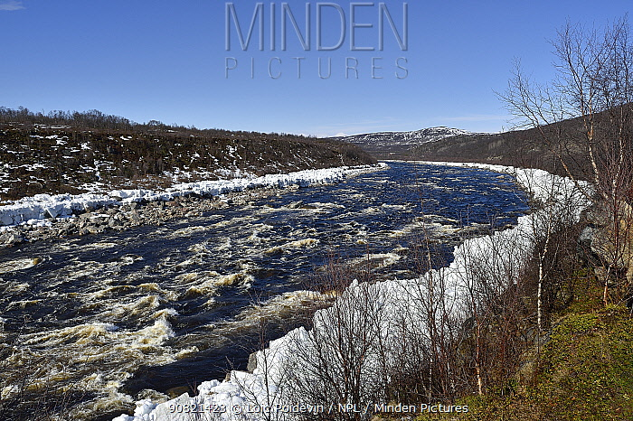 Spring melt of ice on Tana river. Varanger, Norway. May 2019.