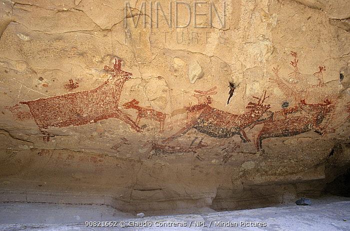 Prehistoric rock art with depiction of Pronghorn antelope. Boca de San Julio cave, San Francisco Sierra, El Vizcaino Biosphere Reserve, Baja California Peninsula, Mexico.