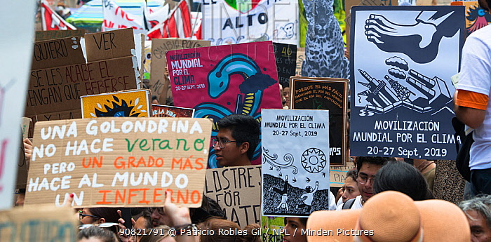 Protestors with placards during 'Fridays for the Future' climate change protest. Paseo de la Reforma Avenue, Mexico City, Mexico. September 2019.