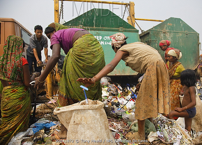 People picking through rubbish from newly arrived skips, on landfill site. Guwahati, Assam, India. 2009.