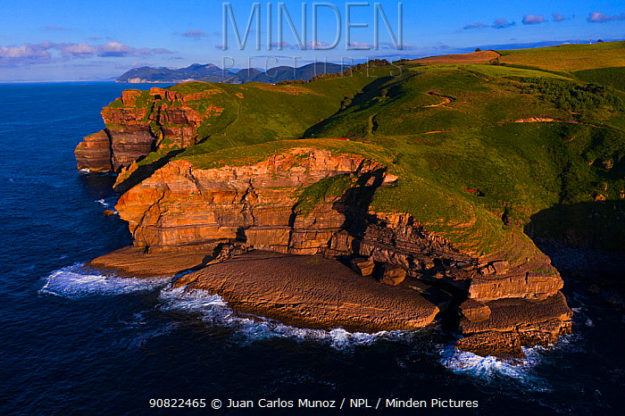 Cliffs of Arnuero above Cantabrian Sea in evening light, aerial view. Transmiera Ecopark, Santona, Victoria and Joyel Marshes Nature Reserve, Cantabria, Spain. June 2019.