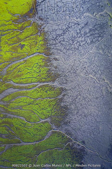 Tidal marsh at low tide, aerial view. Santona, Victoria and Joyel Marshes Natural Park, Cantabria, Spain. May 2019.