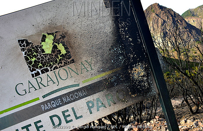 Charred Garajonay National Park sign with dead trees in background, caused by forest fire. La Gomera, Tenerife, Canary Islands, 2012.