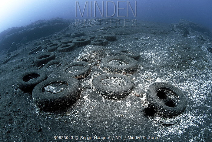 Marine pollution, - rubber car tyres on seabed, Canary Islands. 2014.