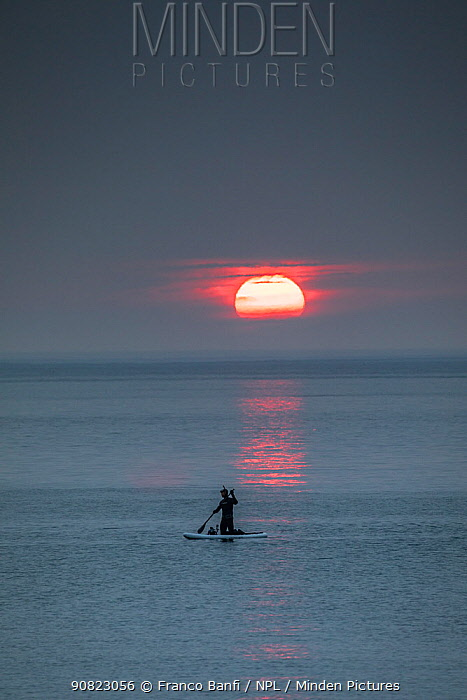 Man paddleboarding at sunset, returning from whale watching. Vrangel Bay, Primorsky Krai, Russia. August 2019.