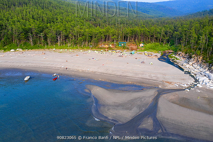 Beach and river estuary, boreal forest in background, aerial view. Camp on beach, gathering to watch Bowhead whale (Balaena mysticetus) congregation. Vrangel Bay, Primorsky Krai, Russia. August 2019.