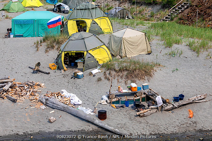 Outdoor kitchen on camp in Vrangel Bay where Bowhead whale (Balaena mysticetus) congregate in summer. Primorsky Krai, Russia. August 2019.