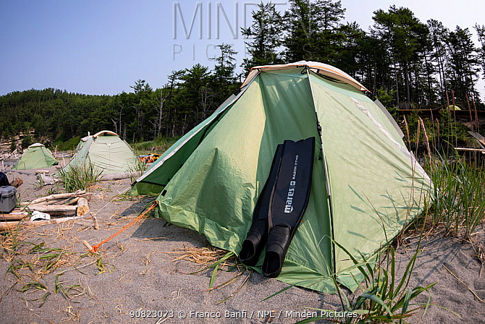 Diving fins resting against tent on beach with coniferous forest in background. In Vrangel Bay where Bowhead whale (Balaena mysticetus) congregate in summer. Primorsky Krai, Russia. August 2019.