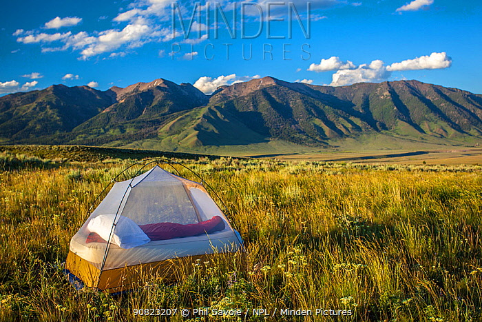 Tent pitched near Hilgard Peak, Beaverhead National Forest, Montana, USA, July 2011.