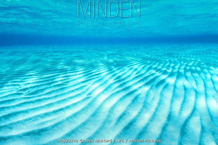 Ripples of sand on a shallow seabed. East End, Grand Cayman, Cayman Islands, British West Indies. Caribbean Sea.