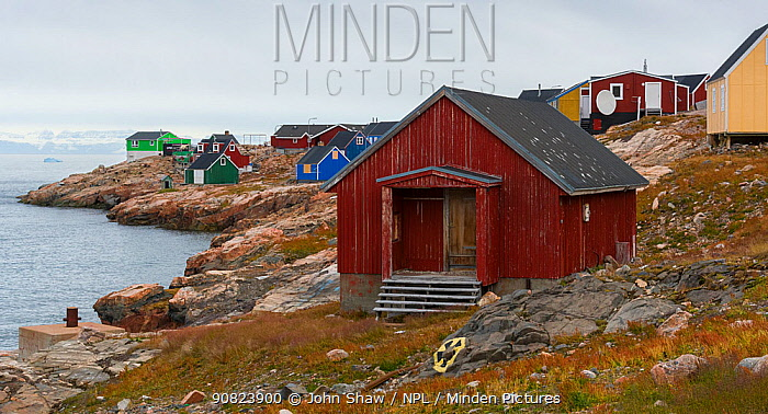 Brightly painted houses of Ittoqqortoormlit village, Scoresby Sund, East Greenland, August, 2019.