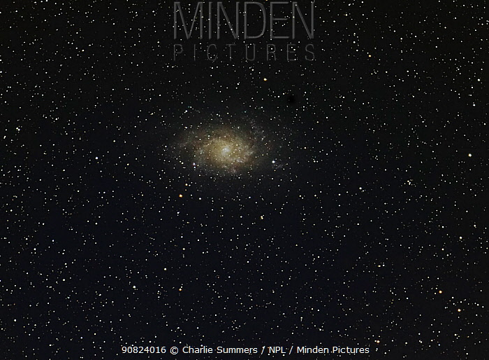 The Pinwheel Galaxy or Triangulum Galaxy (M33), taken 26 September 2014 from eastern Colorado. Taken with digital focus stacking.