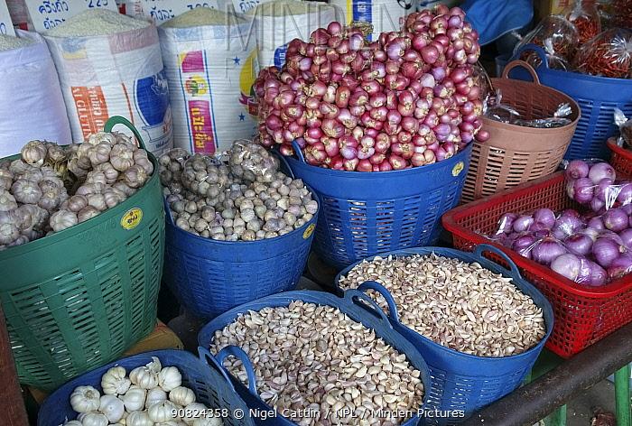 Onions, Garlic and Shallots (Allium spp) in plastic baskets on market stall, Bangkok food market, Thailand. 2015.