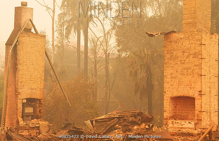 Remains of a building after a bushfire in Cobargo, New South Wales, Australia. January 2020.