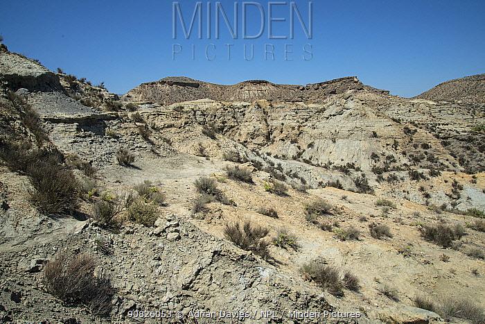 Desertio de Tabernas, Europe's only true desert. Almeria, Spain. June.