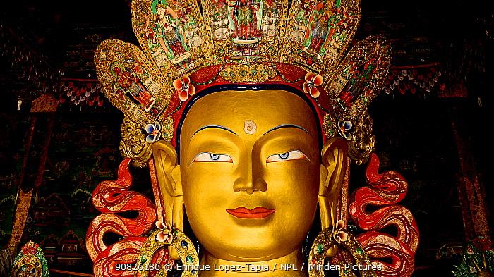 Statue of Maitreya Buddha, the largest such statue in Ladakh (15 meters) Thikshey Monastery, Ladakh, India. September 2011.