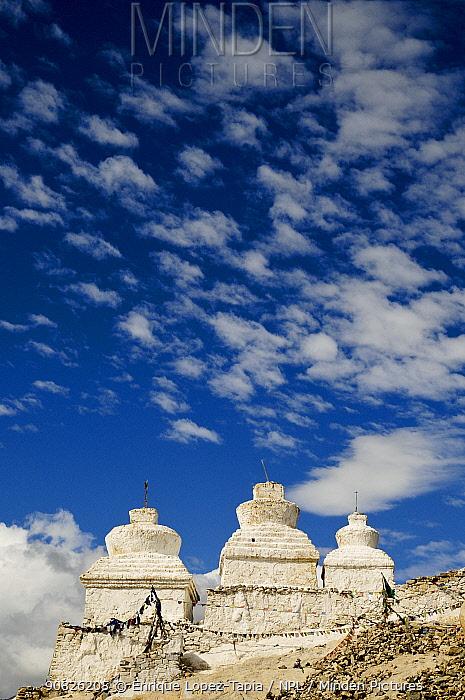 Chortens / Stupa in the Shey Valley, Indus Valley, Ladakh, India. September 2011.