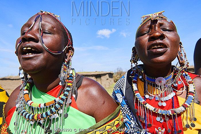 Maasai women singing and dancing in traditional dress and adorned with bead work, Masai Mara National Reserve, Kenya.