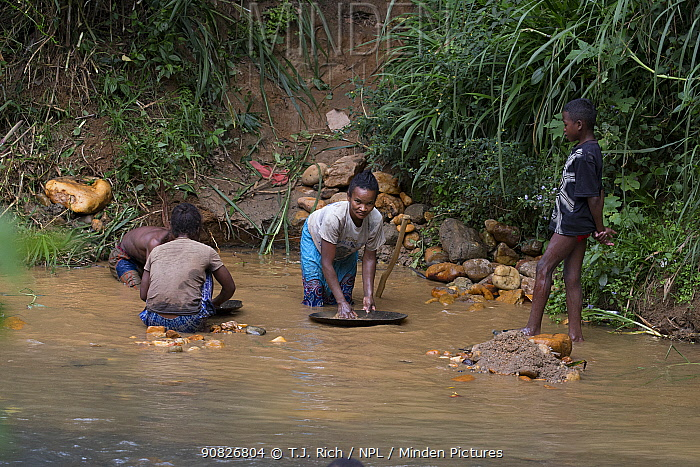 Locals panning for gold, Kianjavato, Madgascar .