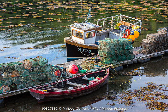 Moored small fishing boat and lobster pots / prawn creels stacked on jetty in the Plockton Harbour, Scottish Highlands, Scotland, UK