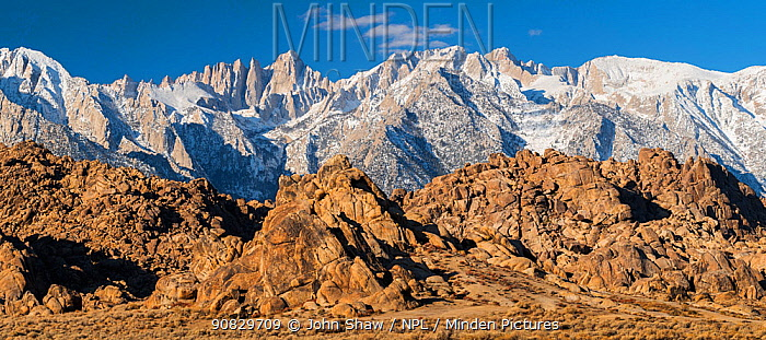 Weathered granite boulders and snow-covered Sierra Nevada Mountains. Mt. Whitney, tallest mountain in the contiguous United States with an elevation of 14,505 feet. is just left of center. Alabama Hills, California USA. November.