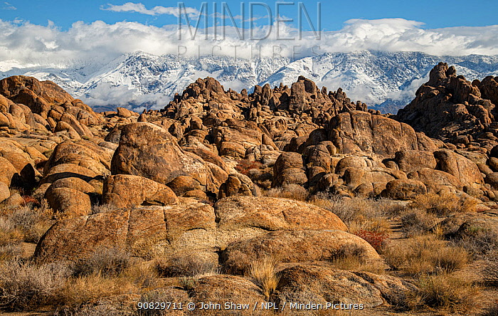 Deeply weathered granite boulders below the snow covered Sierra Nevada Mountains, in the Alabama Hills, California, USA, November.
