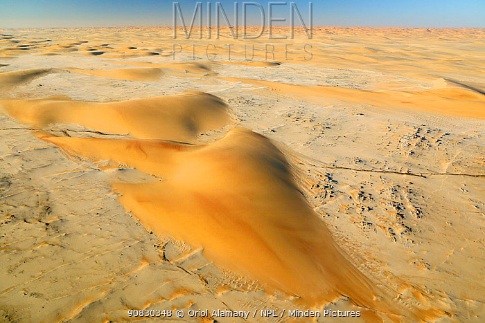 Sand dunes in the Namib Desert, between Solitaire and the Atlantic Ocean coast, Namibia, August