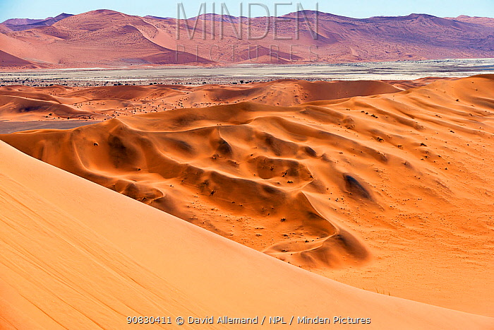 Sossusvlei, Namib desert, Namib Naukluft Park, Namibia, Africa