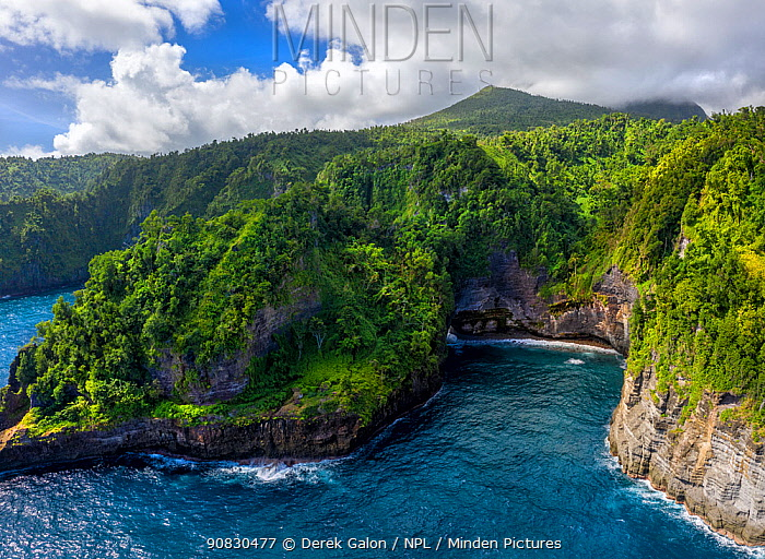 Aerial view of Glassy Point, East Coast of Dominica, West Indies. December 2019. Stitched panorama.