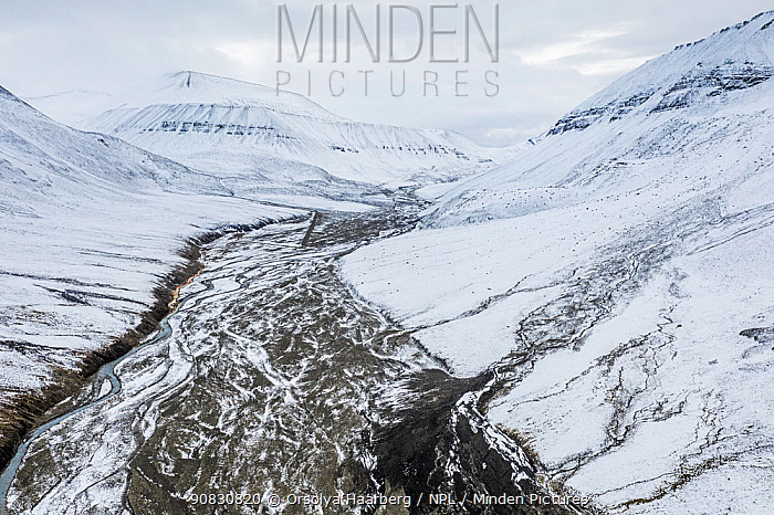 Aerial view of the snow-covered Bolterdalen valley in early autumn. Spitsbergen, Svalbard, Norway.