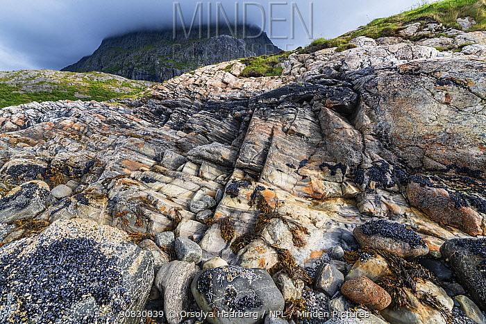 Coastal landscape with marble formations. Tomma Island, Helgeland Archipelago, Norway. July.