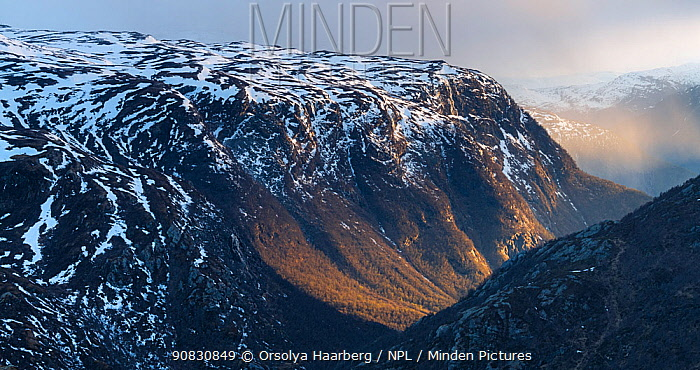 Melting snow in early May. Bergsdalen valley illuminated by late evening sunlight. Sogn og Fjordane, Hurrungane Mountains, Norway. May.