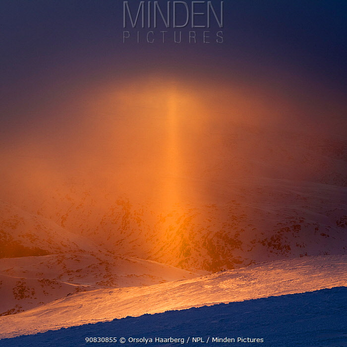 Sun pillar (optical phenomenon) that appears against the setting sun in light snow. Sognefjellet, Norway. April.