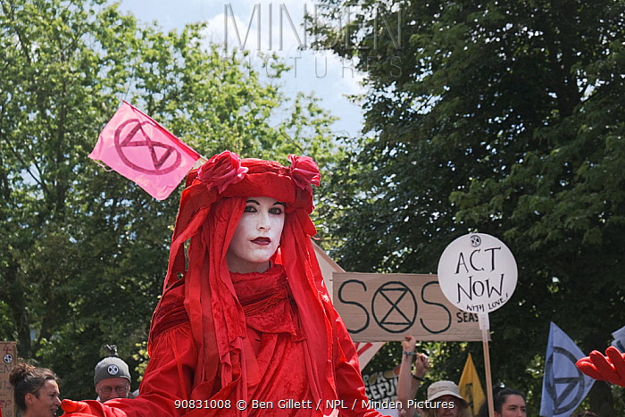 Woman protestor, part of The Red Brigade, at Extinction Rebellion climate change march. Bristol, England, UK. 16 July 2019.