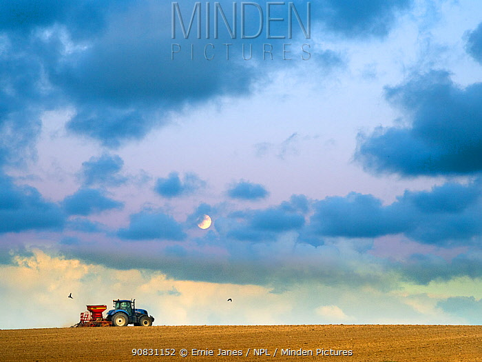 Seed drilling at Cley in autumn with rising moon, Norfolk, UK. October 2018.