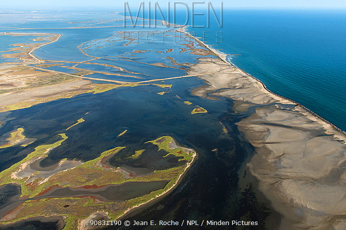 Aerial view of the east coast of Beauduc showing flooded areas caused by sea levels rising, Camargue, France. September 2019.