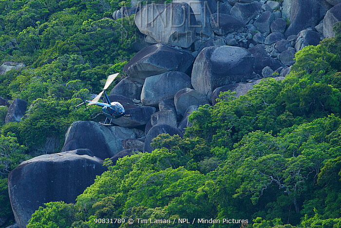 Helicopter low over the rainforest and boulders of the Cape Melville Range, Cape Melville National Park, Cape York Peninsula, Queensland, Australia. March 2013