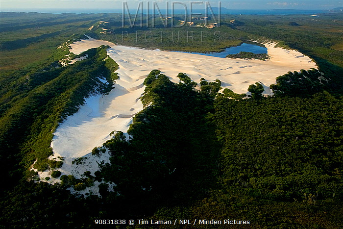 Aerial view of white silica sand dune at Cape Flattery, with Cape Bedford visible in the background. Cape York Peninsula, Australia. June 2012