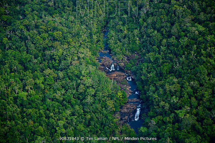 Aerial view of waterfall in the rain forest, Iron Range National Park. Cape York Peninsula, Australia. June 2012