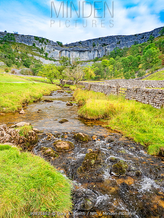 River at base of limestone pavement. Malham Cove, Yorkshire Dales National Park, England, UK. September 2019.