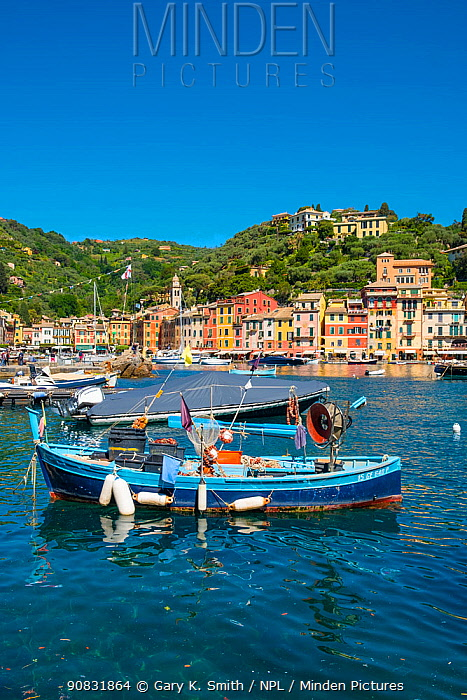 Fishing boat in harbour. Portofino, Italian Riviera, Portofino, Genoa, Italy. May 2019.