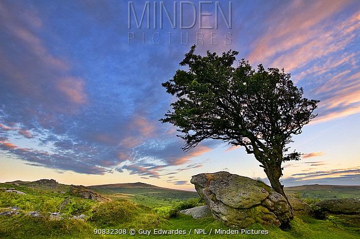 Saddle Tor at sunset, Dartmoor National Park, Devon, England