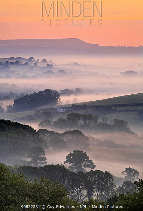 Dawn over the Marshwood Vale, Pilsdon Pen in the distance, Charmouth, Dorset, England, June 2006