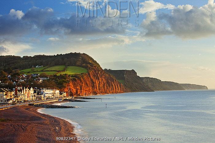 Sidmouth coastline and red Sandstone cliffs of Jurassic Coast, Devon, England, November 2009