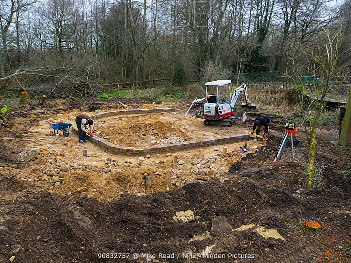 Preparatory work for construction of educational dipping pond, Blashford Lakes Nature Reserve. Hampshire and Isle of Wight Wildlife Trust Reserve, Ellingham, near Ringwood, Hampshire, England, UK, February 2019