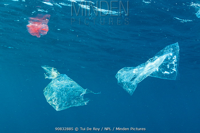 Plastic pollution in tropical reef, Tulamben, Bali, Indonesia. Lesser Sunda Islands.