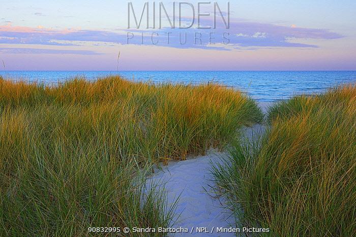 Sand dunes and Baltic sea at dusk, Dueodde, Bornholm, Denmark, June.