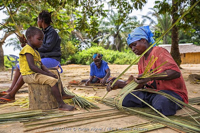Local women weaving grasses into matting. Democratic Republic of the Congo.
