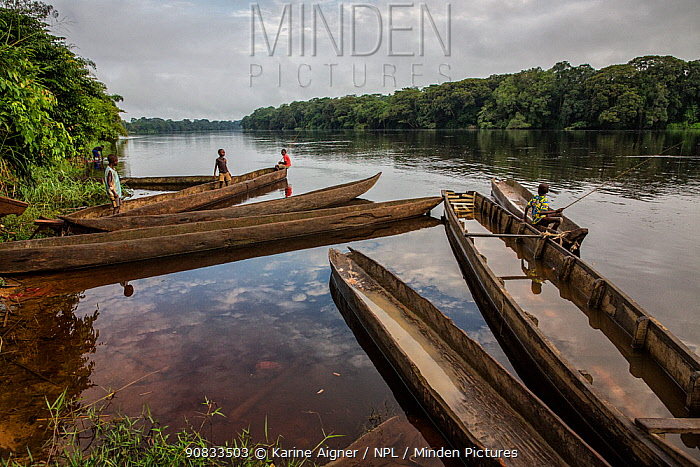 Local boys fishing from canoes on river, Democratic Republic of Congo. May 2017.